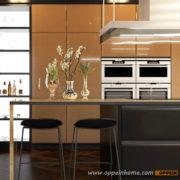 4-OP16-L20-Kitchen-Cabinet-Furniture-600×600